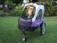 Kočárek pro psy s 38cm kolečky a nosností až 30 kg. Rozměry kabiny 72 × 45 × 60 cm, možnost připevnění upravovacího stolku. Barva fialovo-šedá. FOTO 2
