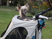 Kočárek pro psy s 38cm kolečky a nosností až 30 kg. Rozměry kabiny 72 × 45 × 60 cm, možnost připevnění upravovacího stolku. Barva modro-šedá. FOTO 5