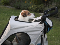 Kočárek pro psy s 38cm kolečky a nosností až 30 kg. Rozměry kabiny 72 × 45 × 60 cm, možnost připevnění upravovacího stolku. Barva modro-šedá. FOTO 8