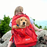 Luxusní a špičkově zpracovaný batoh na psa s nosností až 11 kg. Pevné skořepinové dno, odvětrávaný zádový panel, hrudní a bederní pásy pro ideální rozložení váhy. Barva šedo-červená. (22)