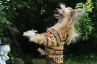 FOTO – Obleček pro psy i fenky – světle hnědá mikina se vzorem od For My Dogs (4)