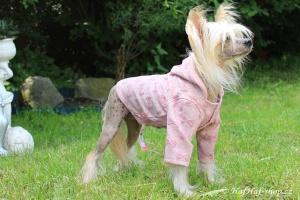 FOTO – Oblečky pro psy i fenky – růžová mikina z měkké pleteniny PINK BOW
