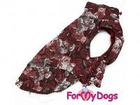 Obleček pro psy i fenky jezevčíků od FMD – zimní bunda CAPARISON BROWN z voduodpuzujícího materiálu. Bunda je zateplená sinteponem a má hedvábnou podšívku. Zapínání na suchý zip. (3)
