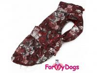 Obleček pro psy i fenky jezevčíků od FMD – zimní bunda CAPARISON BROWN z voduodpuzujícího materiálu. Bunda je zateplená sinteponem a má hedvábnou podšívku. Zapínání na suchý zip.