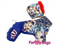 Obleček pro fenky – sinteponem zateplený zimní overal BLUE FOLK od ForMyDogs. Vylepšené zapínání na zádech, odnímatelná kapuce, hedvábná podšívka. (3)
