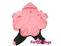 Obleček pro psy i fenky – teplejší overal PINK DOTS od ForMyDogs z měkké pleteninové látky. Zapínání na druky na bříšku, pružné lemy, kapuce. (2)