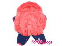 Obleček pro fenky – zimní overal PINK FIREWORKS od For My Dogs z voduodpuzujícího materiálu. Plyšová podšívka, zateplený sinteponem. (2)
