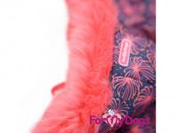 Obleček pro fenky – zimní overal PINK FIREWORKS od For My Dogs z voduodpuzujícího materiálu. Plyšová podšívka, zateplený sinteponem. (4)