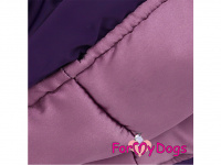Obleček pro fenky – fialový, sinteponem zateplený zimní overal PURPLE DOTS od ForMyDogs. Hedvábná podšívka, barva fialová. (2)