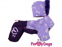 Obleček pro fenky – fialový, sinteponem zateplený zimní overal PURPLE DOTS od ForMyDogs. Hedvábná podšívka, barva fialová.