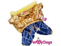 Obleček pro fenky – teplý zimní overal GOLD BLUE od For My Dogs z voduodpuzujícího materiálu. Kožešinová podšívka, zateplený sinteponem.