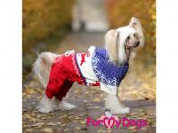 Obleček pro psy i fenky – pletený overal ForMyDogs RED REINDEER ze 100% akrylu pro ochranu před chladnějším suchým počasím. (FOTO)