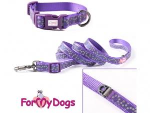Obojky pro psy – fialový puntíkovaný obojek z kolekce ForMyDogs PURPLE DOTS (3)