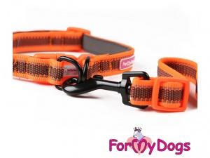 Obojky pro psy – oranžový obojek z kolekce ForMyDogs RETROREFLECTIVE ORANGE (2)