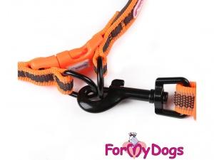 Obojky pro psy – oranžový obojek z kolekce ForMyDogs RETROREFLECTIVE ORANGE (3)