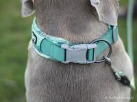 Ergonomický obojek pro psy HURTTA z prodyšného polyesteru se zvýšenou odolností vůči povětrnostním vlivům. Barva zelená, vzor Park Camo. (FOTO 5)