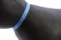 Stylový obojek pro kočky BOBBY – modrý se stříbrnou rolničkou. Reflexní prvky, klasické zapínání, univerzální velikost (4).