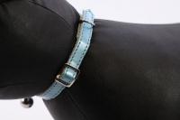 Luxusní kožený obojek pro kočky BOBBY – perleťově modrý s rolničkou. Klasické zapínání s bezpečnostní gumou, univerzální velikost (4).