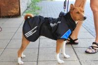Luxusní zimní bunda pro psy poskytující dokonalý teplotní a pocitový komfort. Ripstop šusťákovina, mikrofleecová podšívka (2).