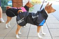 Luxusní zimní bunda pro psy poskytující dokonalý teplotní a pocitový komfort. Ripstop šusťákovina, mikrofleecová podšívka (3).
