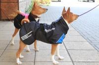 Luxusní zimní bunda pro psy poskytující dokonalý teplotní a pocitový komfort. Ripstop šusťákovina, mikrofleecová podšívka (4).