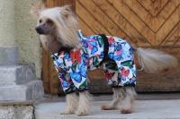 FOTO – Obleček pro psy i fenky – overal BUTERFLIES (4)