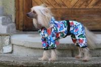 FOTO – Obleček pro psy i fenky – overal BUTERFLIES