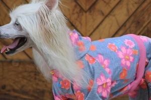 FOTO – Obleček pro psy i fenky – overal DAISIES s květinovým vzorem (6)