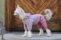 FOTO – Obleček pro psy i fenky – lehoučký pletený overal z veluru