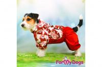 Obleček pro fenky malých až středních plemen – lehoučká pláštěnka CHOCOLATE od For My Dogs. (10)