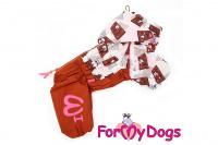 Obleček pro fenky malých až středních plemen – lehoučká pláštěnka CHOCOLATE od For My Dogs.
