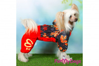 Obleček pro fenky malých až středních plemen – lehoučká pláštěnka LEAVES RED od For My Dogs. (10)