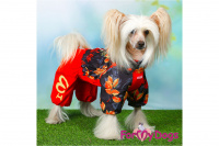 Obleček pro fenky malých až středních plemen – lehoučká pláštěnka LEAVES RED od For My Dogs. (2)