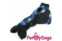 Obleček pro psy jezevčíků – lehoučká pláštěnka BLUE od ForMyDogs. Zapínání na zip na zádech, zvýšený límec, pružné lemy, nastavitelná gumička na břiše. (3)