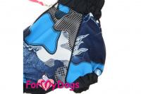 Obleček pro psy jezevčíků – lehoučká pláštěnka BLUE od ForMyDogs. Zapínání na zip na zádech, zvýšený límec, pružné lemy, nastavitelná gumička na břiše. (4)