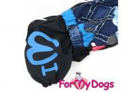 Obleček pro psy jezevčíků – lehoučká pláštěnka BLUE od ForMyDogs. Zapínání na zip na zádech, zvýšený límec, pružné lemy, nastavitelná gumička na břiše. (5)