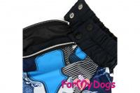 Obleček pro psy jezevčíků – lehoučká pláštěnka BLUE od ForMyDogs. Zapínání na zip na zádech, zvýšený límec, pružné lemy, nastavitelná gumička na břiše. (6)