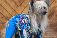FOTO – Obleček pro psy středních a větších plemen – pláštěnka BLUE LEAVES, světle modrá (8)