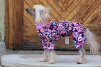 FOTO – Obleček pro psy – světle fialová pláštěnka pro fenky ForMyDogs LILLAC (3)