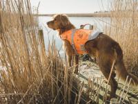 Funkční plovací vesta pro psy HURTTA s dokonalým střihem, ultralehkými plováky a robustní rukojetí pro vyzvednutí psa z vody. Barva oranžová, vzor CAMO. (4)