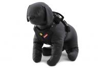 Postroj pro psy do auta Drive Car od EZYDOG je jeden z nejlepších postrojů pro psy do auta testovaný podle norem EU (nařízení ECE 16), Austrálie (ADR42 / 04) a USA (FMVSS 213).
