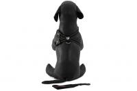 Postroj pro psy značky EZYDOG je ergonomický a pohodlný postroj s polstrovanou hrudní výstuží a odnímatelným pásem pro připnutí psa v autě. (3)
