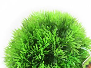 Dekorativní umělá rostlina do akvária od Sydeco. Přirozený vzhled, výška 14 cm. (2)