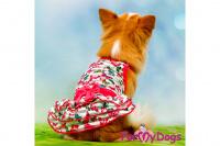 Obleček pro fenky malých až středních plemen – stylové letní úpletové šaty od ForMyDogs BUTTERFLIES. (6)