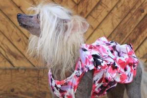 FOTO – Oblečky pro psy – krásné elegantní šaty pro fenky z krepu s květinovým potiskem (3)