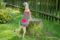 Obleček pro fenky – stylové šaty od For My Dogs. Materiál bavlna/elastan, modrobílý pruhovaný vzor, červená mašle na zádech (5)