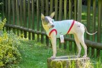 Obleček pro psy i fenky – stylové tílko od For My Dogs (3)