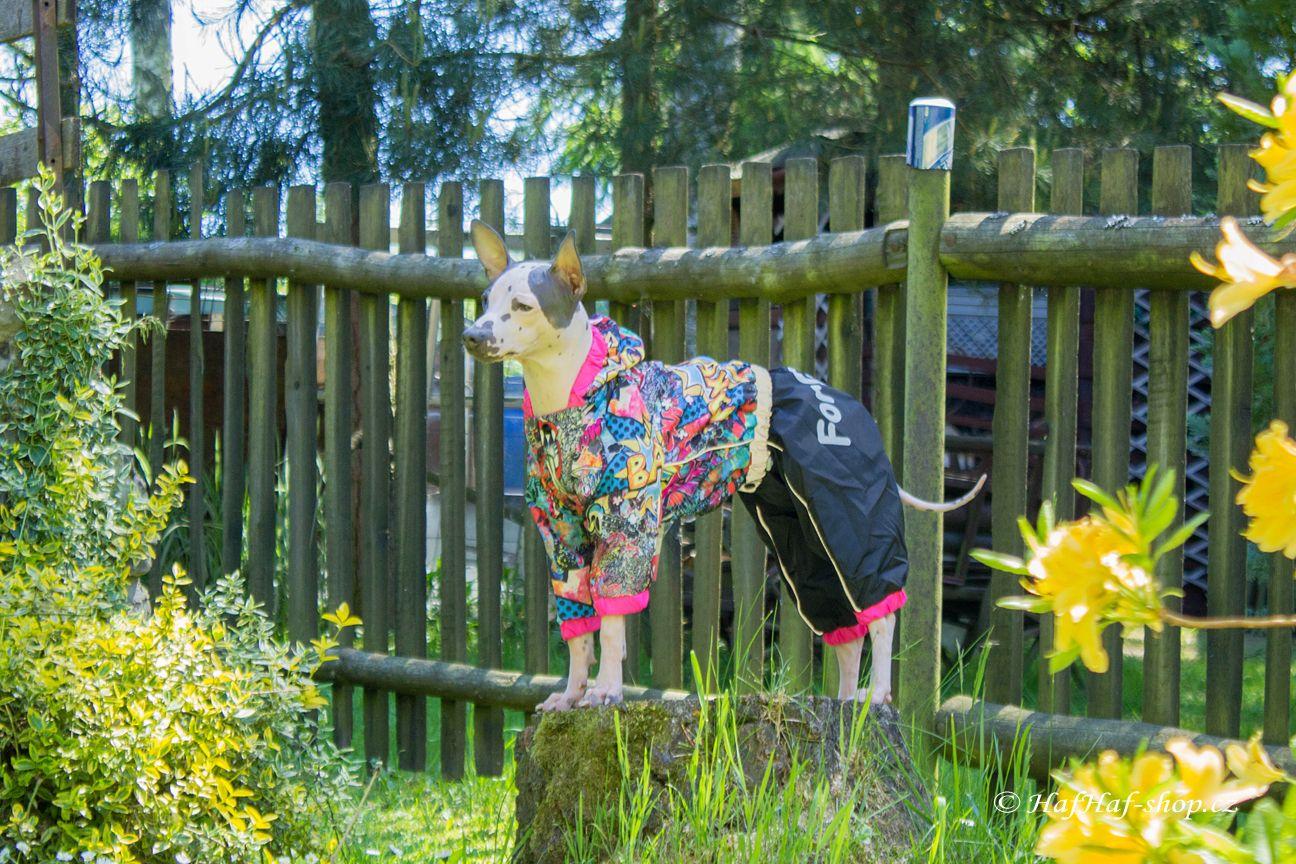 Obleček pro fenky malých až středních plemen – pláštěnka od For My Dogs. Zapínání na druky na břiše, hladká podšívka, barva černá s barevným potiskem