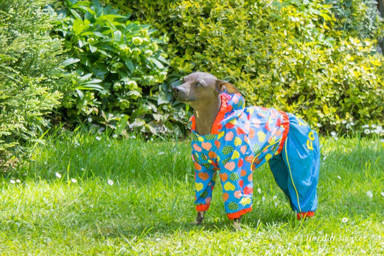 Pláštěnka pro fenky od For My Dogs