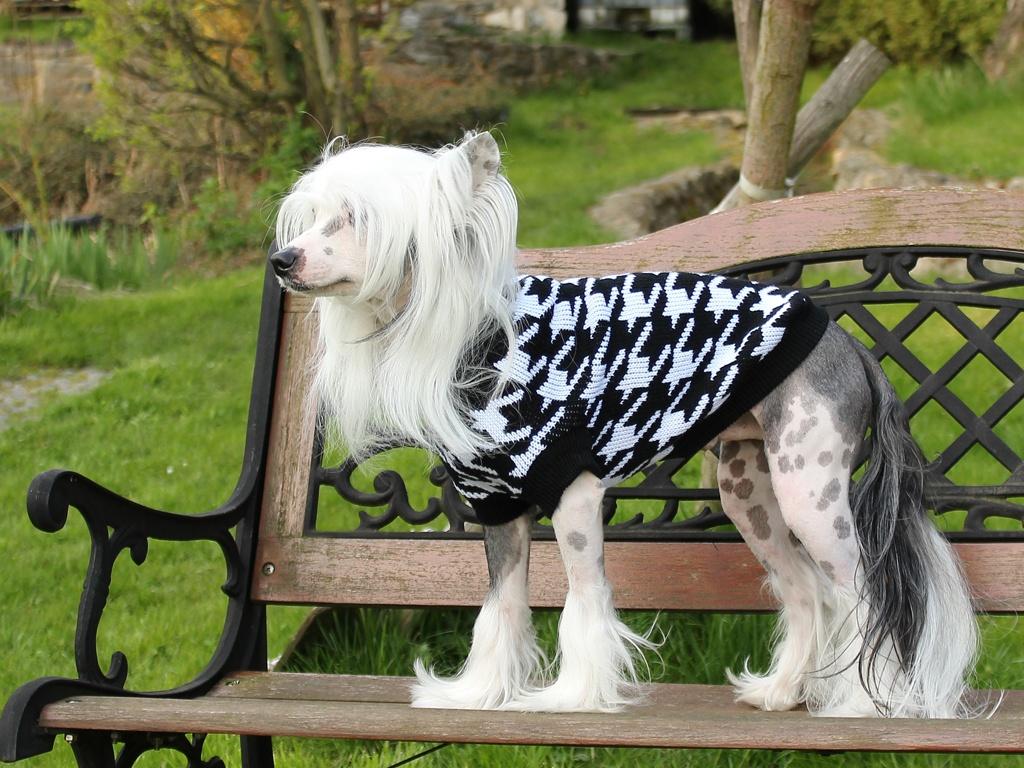 Oblečky pro psy – Černobílý pletený svetr pro psy